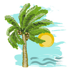 Palm tree sketch, sun and sea on blue background.