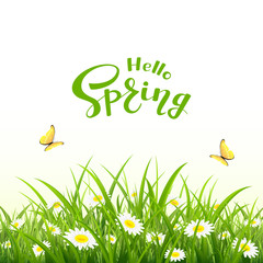 Lettering Hello Spring and natural background with butterfly and flowers