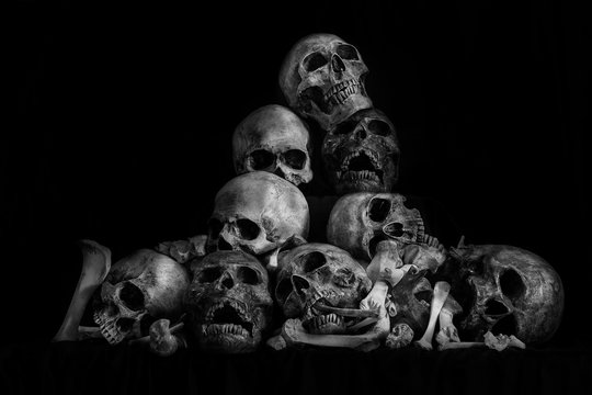 Pile of skulls and bone on dark background / Still life style