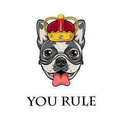 image of an dog bulldog in crown. You Rule.  illustration.