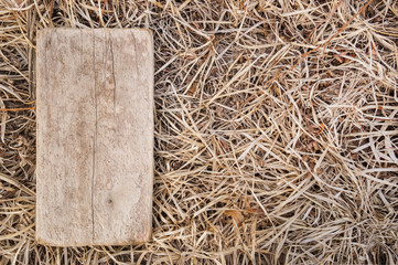 Wooden plaque on the background of a dry autumn grass