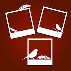 Set of Vector instant polaroid photo frames