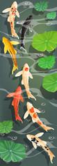 Poster carps Koi fish under water. Vector illustration.