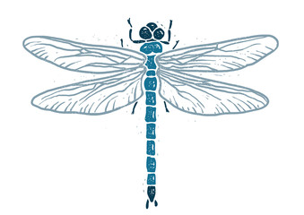 Dragonfly linocut linocut illustration, draw, ink, vector