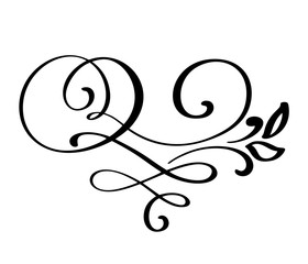 Flourish swirl ornate decoration for pointed pen ink calligraphy style. Quill pen flourishes. For calligraphy graphic design, postcard, menu, wedding invitation, romantic style