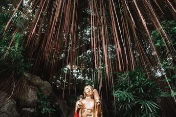 Golden Buddha statue in woods