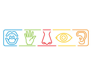 Icon set of five human senses vision eye, smell nose, hearing ear, touch hand, taste mouth. Simple line icon vector color illustration. Sensory icon