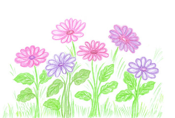 """Colored pencils drawing """"colorful flowers"""" self drawn illustration"""