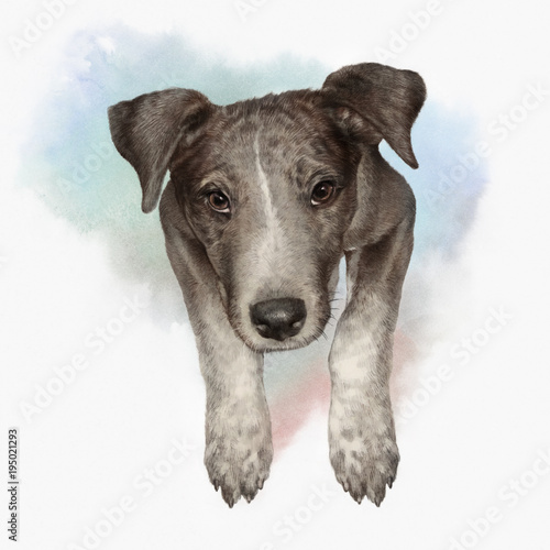 f07cec6d0484e Illustration of a Dog. Cute puppy with paws on the watercolor ...