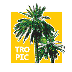 Coconut palm with green leaves on yellow background. Vector illustration of trees in engraving style. Design element for travel, vacation and summer concept.
