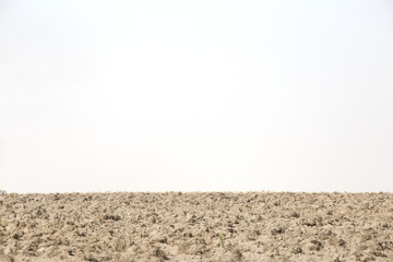 Ploughland or cultivated land isolated on white.