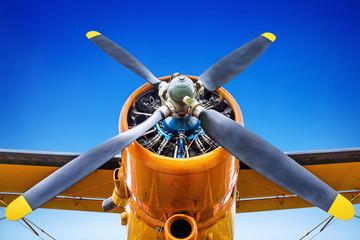 propeller of an aircraft Wall mural