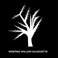 white weeping willow silhouette on black background