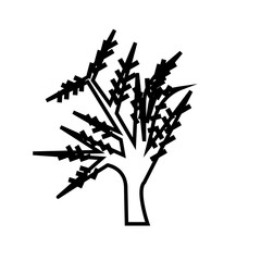 weeping willow silhouette outline on white background