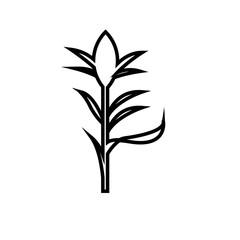 corn stalk silhouette outline on white background