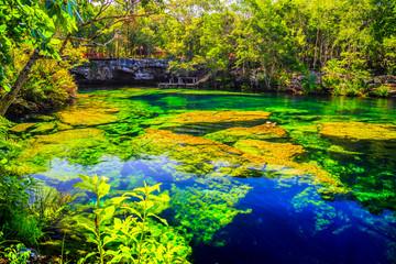 Пещера голубого озера с крупными цветными камнями в лесу. Сенот Мексика