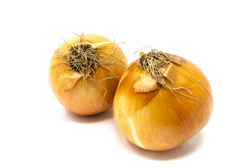 Isolated, close-up studio shot of two yellow onions, with husks on