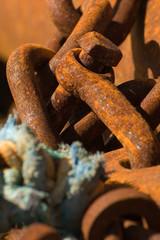 Rusty chain link