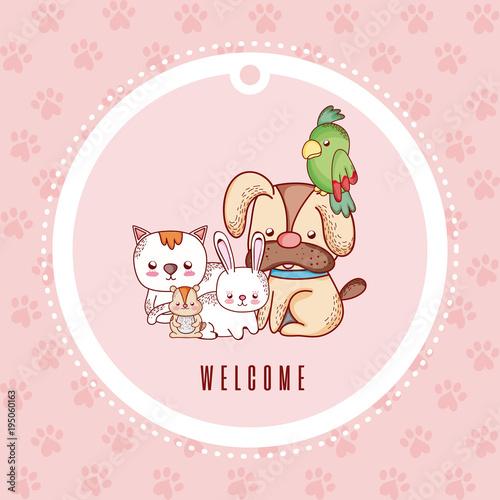 Cute greeting card with pets cartoon
