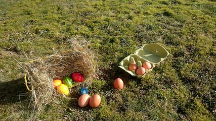 Osterkorb mit bunten Eiern und braune Eier in einem Eierkarton auf einer mit Moos bewachsenen Wiese