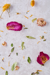 Set of assorted petals isolated on white background, top view, close-up, selective focus