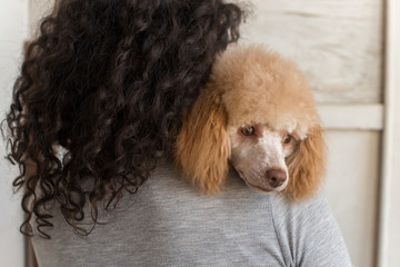 girl with a poodle in her arms
