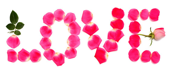Inscription love from rose petals is pink isolated on white background. Creative and fashionable concept. Flowers and flora. Flat lay, top view. Valentine's Day