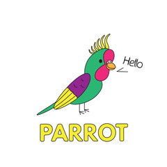 Cartoon Parrot Flashcard for Children