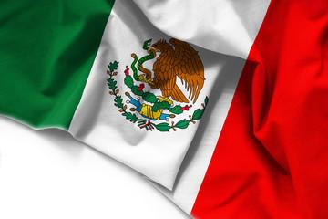 Flag of Mexico on white background