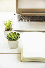 Two small pots with succulents at the computer on the desktop. Next to a white open notepad. A minimalistic stylish workplace in the sunlight