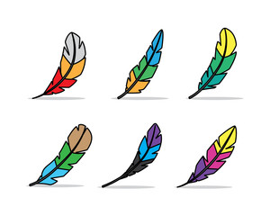 colorful feather illustration , cartoon design style feather
