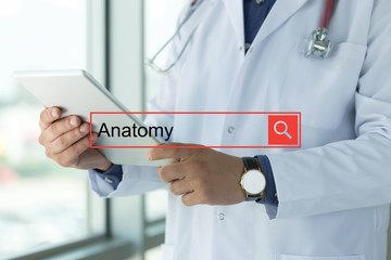 DOCTOR USING TABLET PC SEARCHING ANATOMY ON WEB