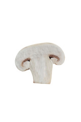 isolated sliced mushroom