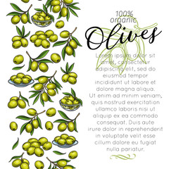 Page template with sketch olives
