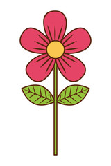pink flower leave decoration natural icon