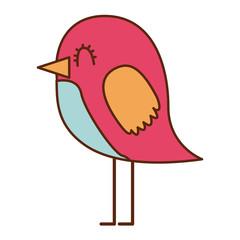 cartoon cute bird adorable animal