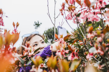 Girl with take photo with phone to pink bell flowers in nature