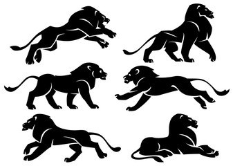 Set of illustrations lions in profile. Stylized vector set on white background.