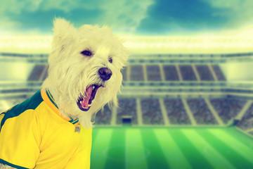 Vintage Brazilian dog fan screaming at stadium