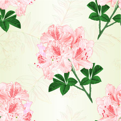 Seamless texture flowers Light pink rhododendrons twig Mountain shrub vintage vector illustration editable hand draw