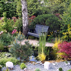 A secluded garden bench by a pond in a corner of the garden