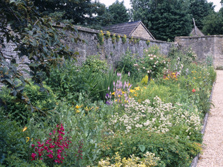 Colourful summer garden flower borders in a walled garden