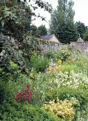 Colourful summer garden flower borders in a walled garden