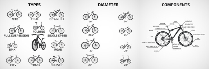 Vector bicycles of various types, wheel diameters, for sports and recreation, scheme  a modern bike.