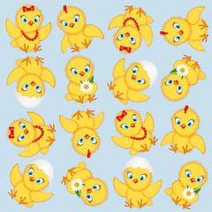 chicken baby pattern