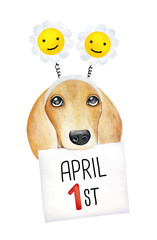 "Happy April Fool's Day decoration design. Cute doggy character with paper message and calendar sheet: ""April 1st"". Hand drawn watercolour graphic on white, isolated. Card, print, poster, web banner."