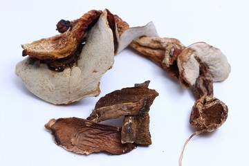 Dried mushrooms on a white background