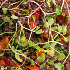 Close up of vegan red risotto with sprouts and broccoli