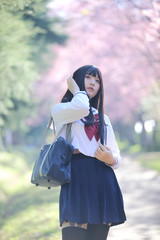 Japanese school girl dress with sakura flower nature walkway
