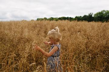 Little girl walking in field of long grass.